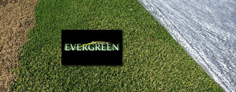 BTSI | Evergreen Turf Covers